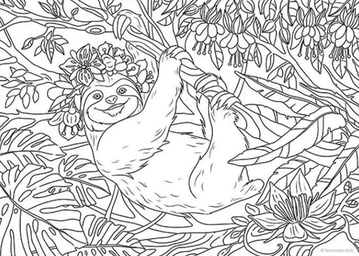 Don T Hurry Be Happy Relax With A Great Sloth Coloring Page Or Maybe A Whole Book Hanging Wit Unicorn Coloring Pages Coloring Pages Nature Coloring Pages