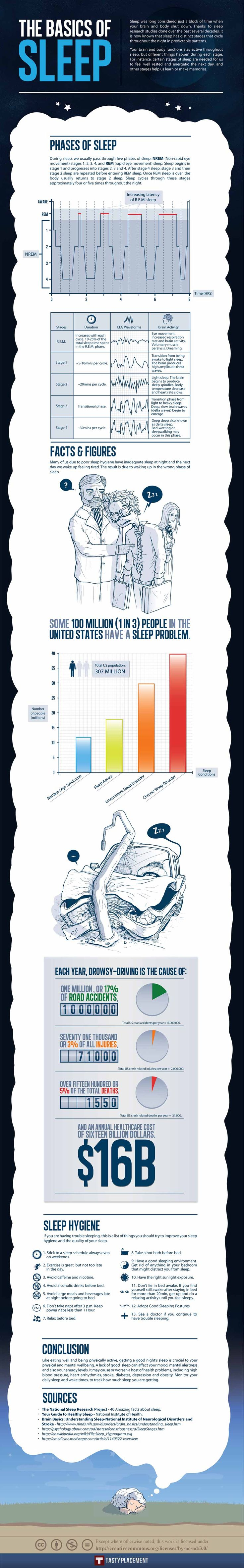Sleep Basics & How They Affect You by tastyreplacements:  Certain stages or sleep are needed for us to feel well rested and energetic the next day and other stages help us learn or make memories. #Infographic #Sleep