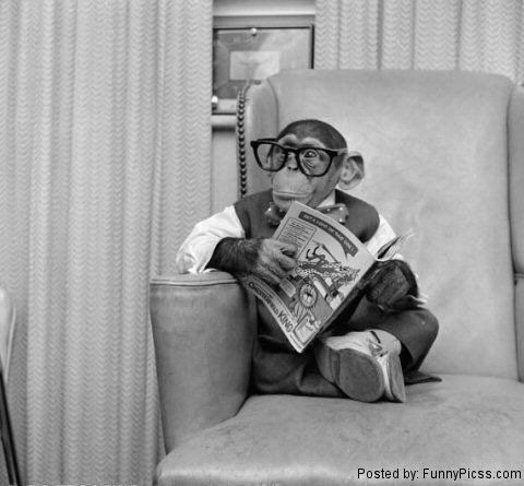 Image result for monkey writing vintage photo