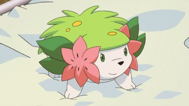nice Mythical Hedgehog Pokémon Shaymin Offered By means of Nintendo Community For July