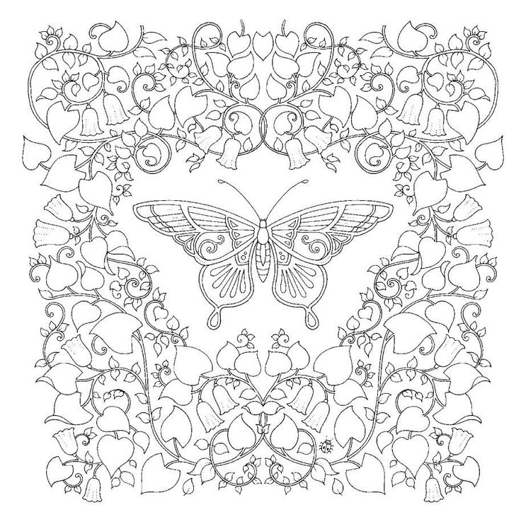 529 best butterfly coloring images on Pinterest