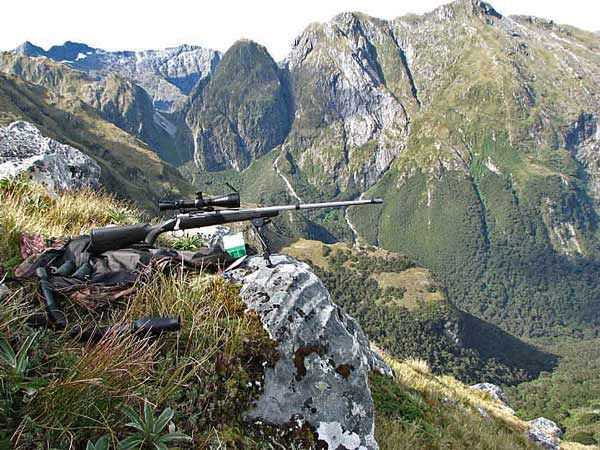 New Zealand Shooting Pinterest: WAPITI HUNTING IN NEW ZEALAND