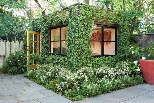 Outdoor studio space with vine cover.