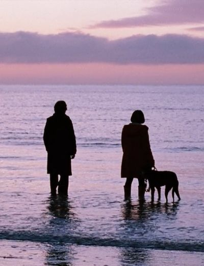 Submarine (2010) by Richard Ayoade with Craig Roberts, Sally Hawkins, Noah Taylor, Yasmin Paige...
