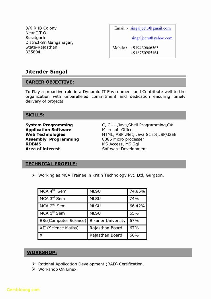 Resume Format For 3Rd Year Engineering Students ,