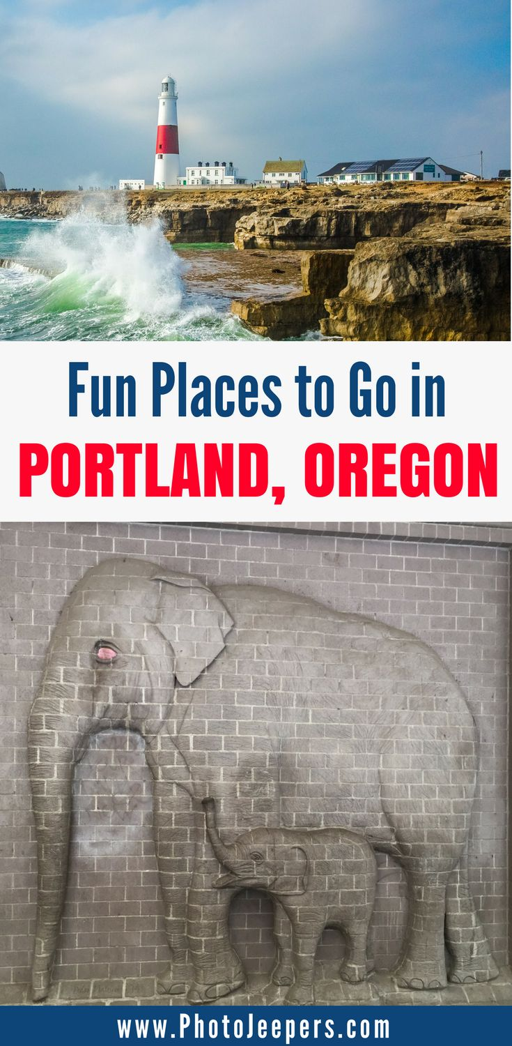 If you're planning a trip to Portland Oregon, you'll want to check out this Portland travel guide first. It includes family friendly things to do in Portland, hikes in Portland, parks in Portland, things to do in downtown Portland Oregon and more. Come see what our favorite things to do with kids in Portland were and save this to your travel board so you can find it later. #portland #oregon #portlandoregon #familytravel