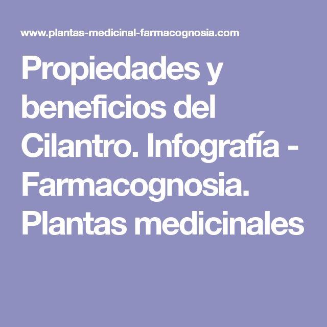 Propiedades y beneficios del Cilantro. Infografía - Farmacognosia. Plantas medicinales