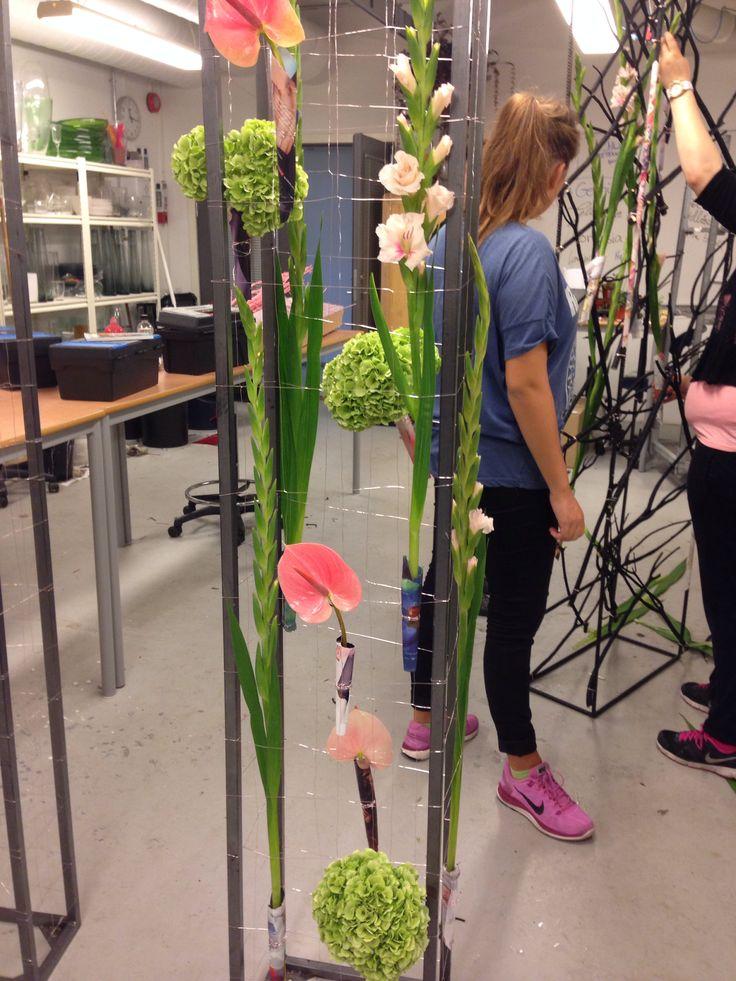 Satt opp noen av blomstene. Hortensia, gladioler og anthurium.