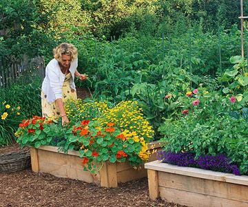 "Grow U with Raised Beds ""Working sticky clay, loose sand, or rocky soil becomes a breeze if you garden in raised beds. Simply fill your beds with high-quality topsoil and compost and you have perfect soil. """