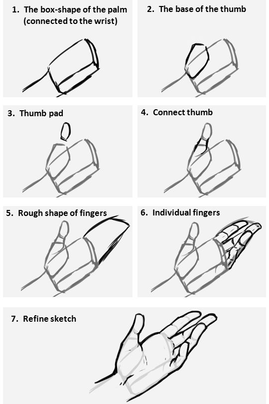 @quadpen @espeon132 Ah yes, hands are notoriously difficult to draw. I'll do what I can to help! First off, below is a diagram of how I usually invision the shapes that make up the hand....