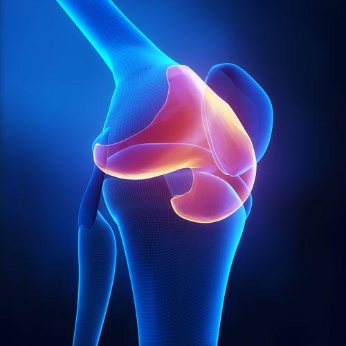 Comment régénérer rapidement des cartilages endommagés ? - Améliore ta Santé