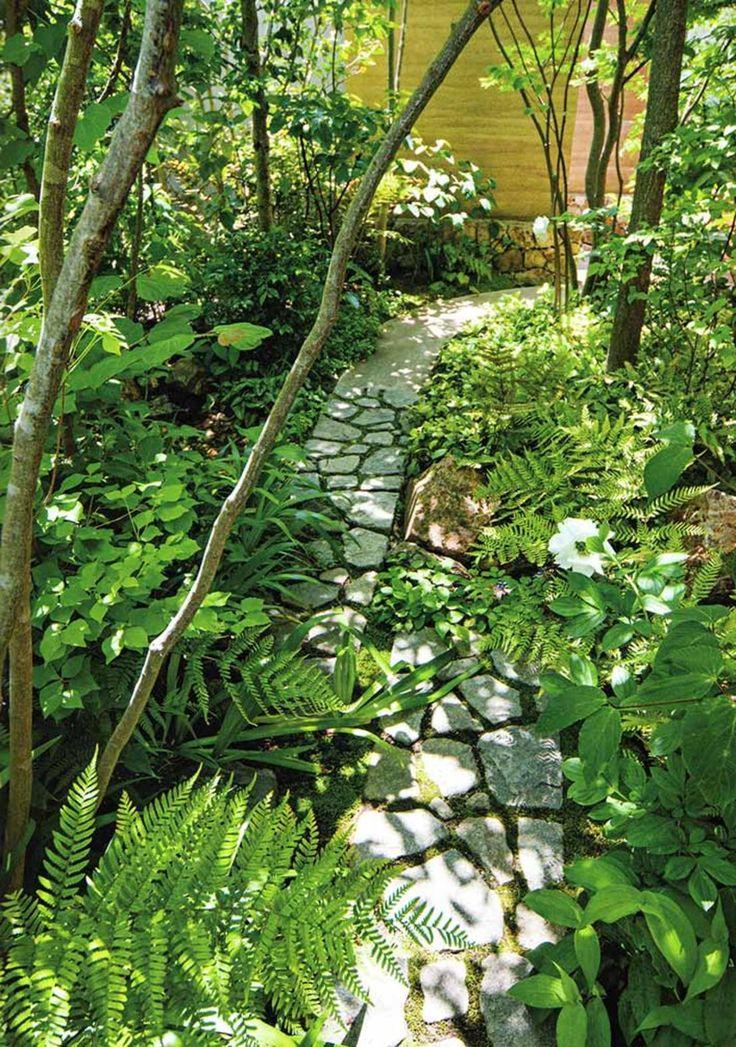 Stony Path with Ferns