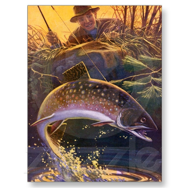 Vintage Sports Trout Fishing; Catch and Release Postcard at Zazzle.ca