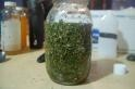 Male Formula Herbal Multi-Vitamin
