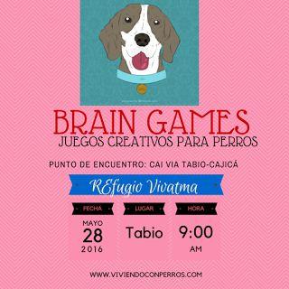 """""""Brain Games"""", juegos creativos para perros inteligentes y juguetones!!! En otras palabras: para el perro TUYO. Todos los cachorros menores de 6 meses que hayan salido del refugio, tienen las actividades gratuitas. Los demás pagan 25.000 por perrito. INFO: fundacionvivatma.au@gmail.com"""