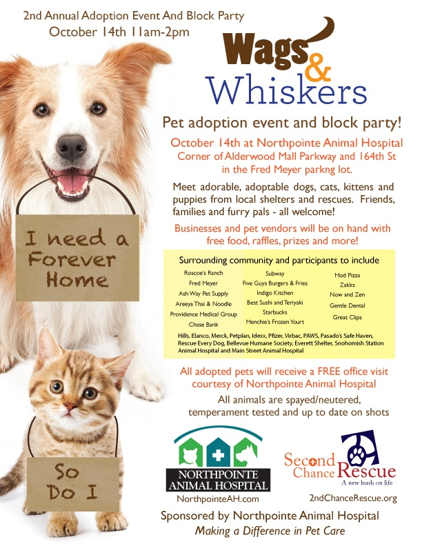 Are you ready for some family-friendly adoption fun? On Sunday, October 14, Northpointe Animal Hospital celebrates its one year anniversary with a Wags and Whiskers Pet Adoption Event and block party! Eight local shelters, including PAWS, will be present with dogs and cats available for adoption. http://l.paws.org/OlFDtm