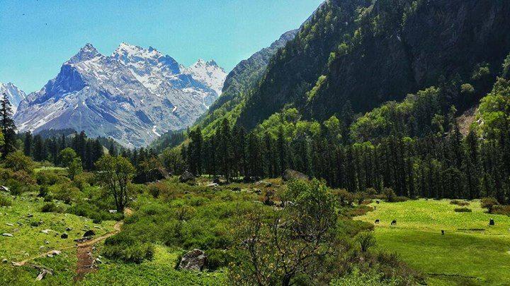 Trek to Har ki Dun - Valley of Gods https://hikcal.com/india/trek-to-har-ki-dun-valley-of-gods/ #thehikingcalendar #Adventure #Asia #Camping #Flora #Forest #Glacier #HarKiDun #Himalaya #India #Nature #Nepal #Outdoor #Outdoors #Trek #Trekking #Uttarakhand #Wildlife #इडय #उततरखड #एशय #हरकडन #हमलय