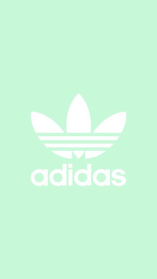 adidas and wallpaper image