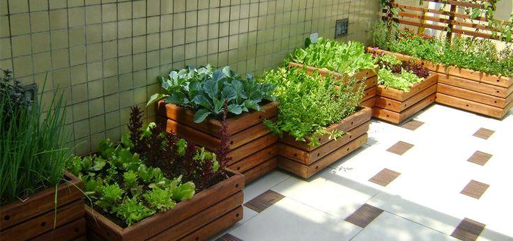Técnicas para ter horta em casa.