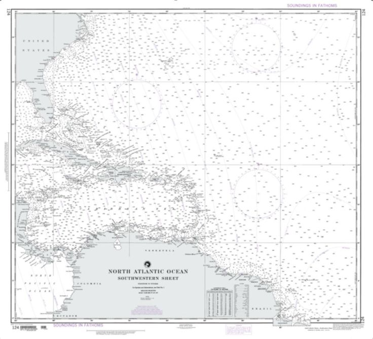 North Atlantic Ocean - Southwestern Sheet (NGA-124-10) by National Geospatial-Intelligence Agency