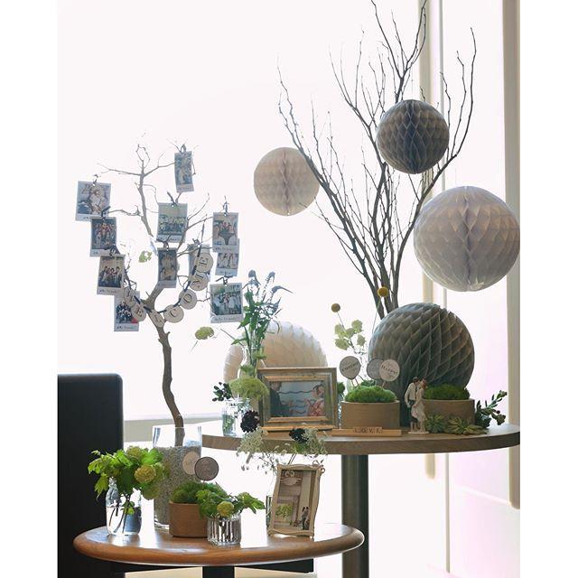 【kaz___m】さんのInstagramをピンしています。 《. ❤️✨ . 気まぐれウェディング写真 結婚式の#ウェルカムスペース . ウェルカムスペース •左のウェルカムツリーは枝&花瓶&装飾全て持ち込み •左のウェルカムツリーのWELCOMEミニガーランド,ポラロイド風写真は手作り,吊り下げてるテラリウムは持ち込み •右の枝,左側に吊るしたガラス内のお花,卓上のお花,モス達は全て装花担当の方にお願いしました。 •ハニカムボールは先輩花嫁様からのお譲り •右卓上のケーキトッパーはハワイで購入したもの(*^^*) •テーマメインカラーはグレー,グリーン #ウェルカムツリー #ハニカムボール #ケーキトッパー #ウェルカムガーランド #テラリウム #ウェルカムモス #loveキューブ #eymwedding #受付スペース装飾 #ウェルカムスペース装飾》