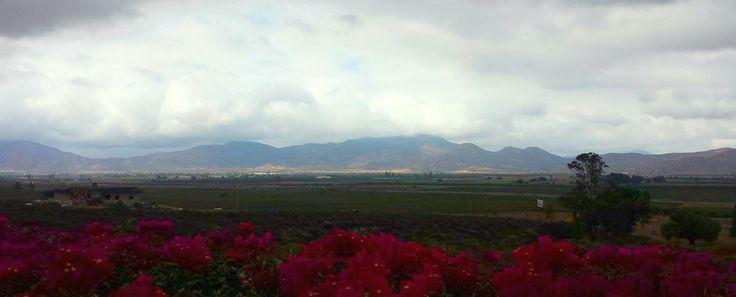 Vista del Valle desde Hotel Hacienda Guadalupe