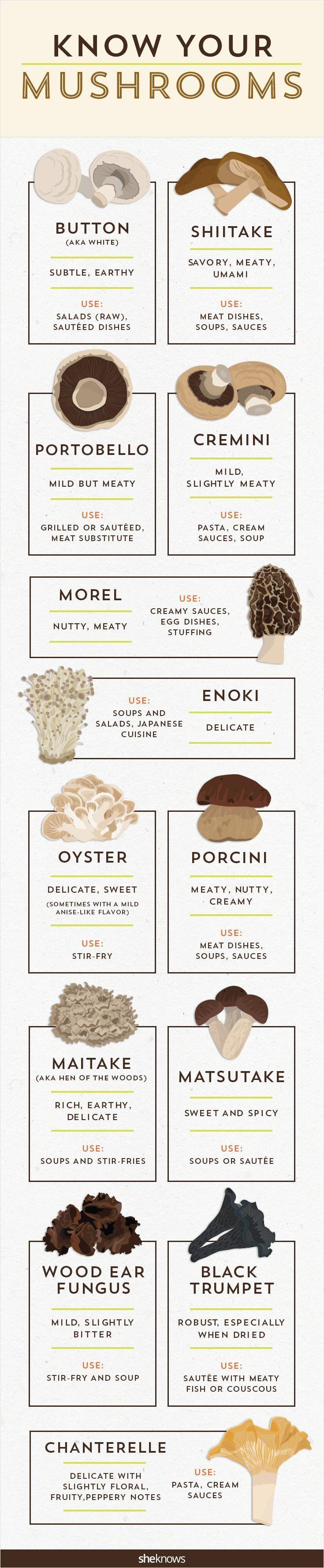Mushroom guide