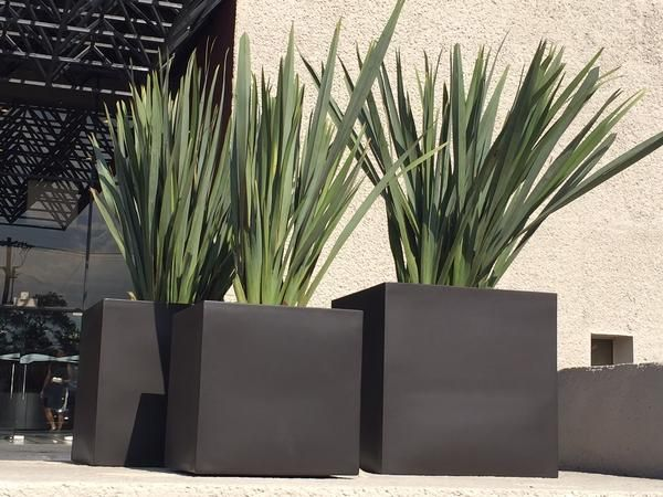 Large fiberglass planters, lightweight, ideal for outdoors and gardens.