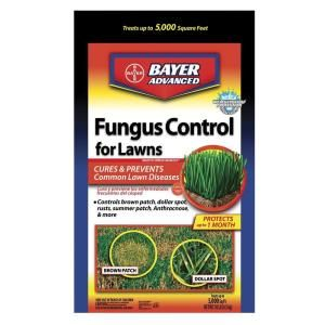 Bayer Advanced 10 lb. Granules Fungus Control for Lawns-701230 - The Home Depot