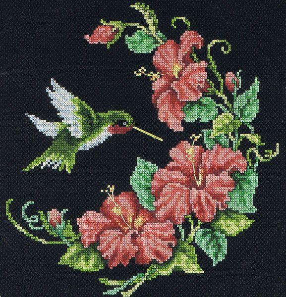 Free Hummingbird Cross Stitch Patterns   Arts and Designs , 3 Milehouse Crescent, Dumfries DG1 1JZ, United ...