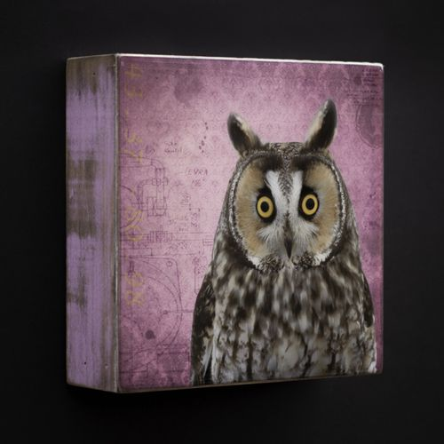 Art Block - Owl by Morgan Jones