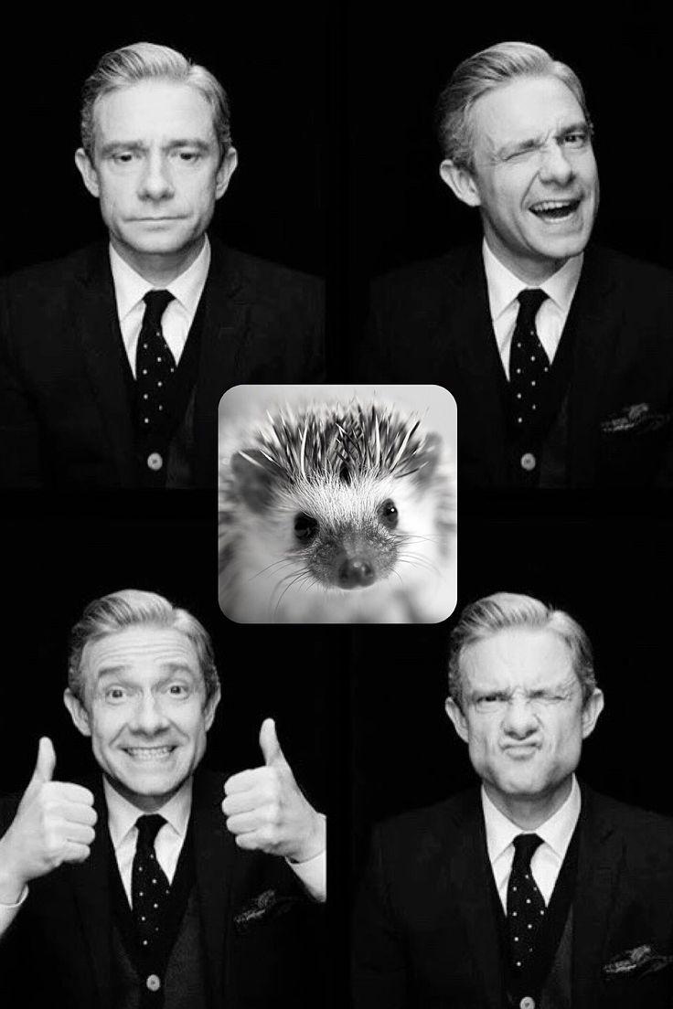 Martin Hedgehog Freeman