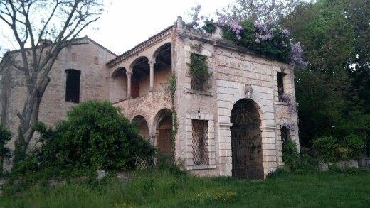 Vigodarzere, La Certosa