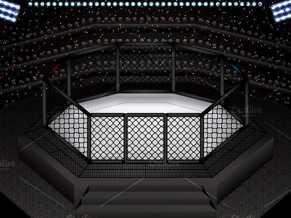 Mma Octagon Cage Mma Octagon Martial Arts