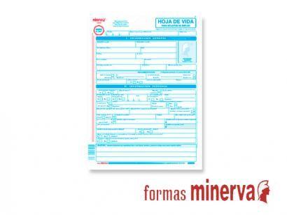Descargar Formato Hoja De Vida Minerva 1003 En Word Gratis