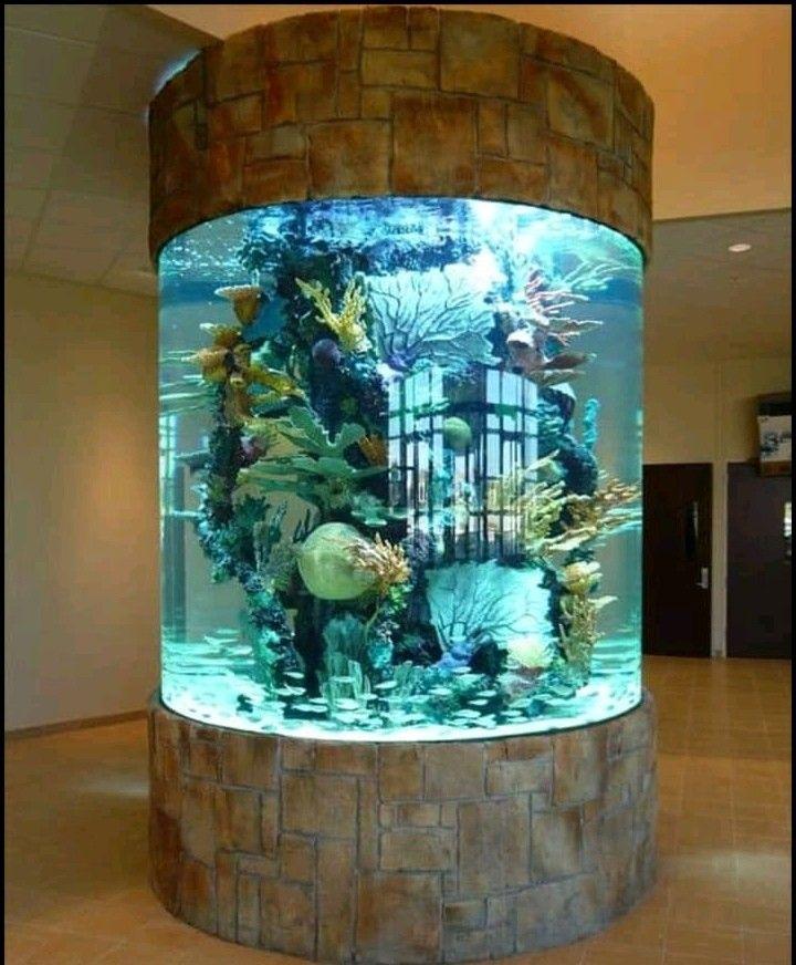 Pin By Ketzi Hernandez On Acuario In 2020 Amazing Aquariums Aquarium Design Aquarium Decorations