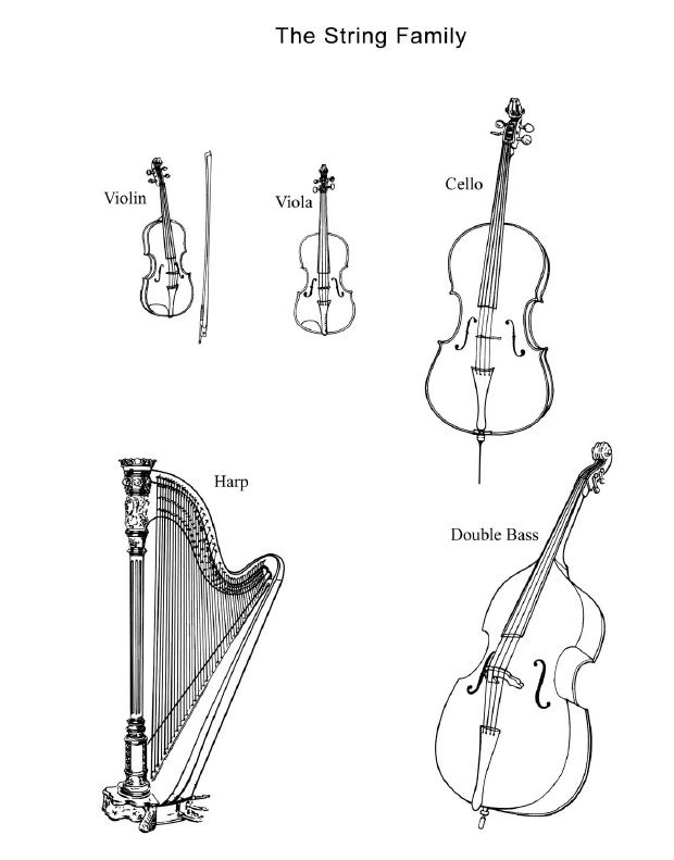 Some people include piano in the string family! But generally, violin, viola, cello, and double bass.