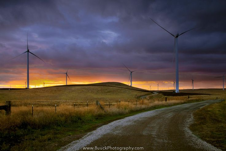 Renewing Nature by BuuckPhotography on DeviantArt