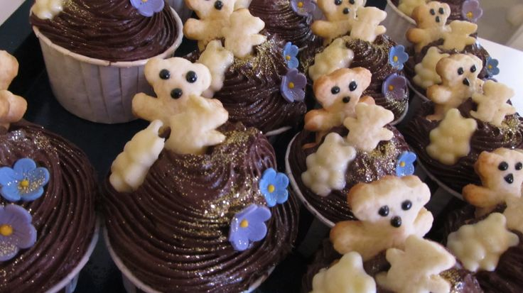 Teddy Bear Picnic Cupcakes