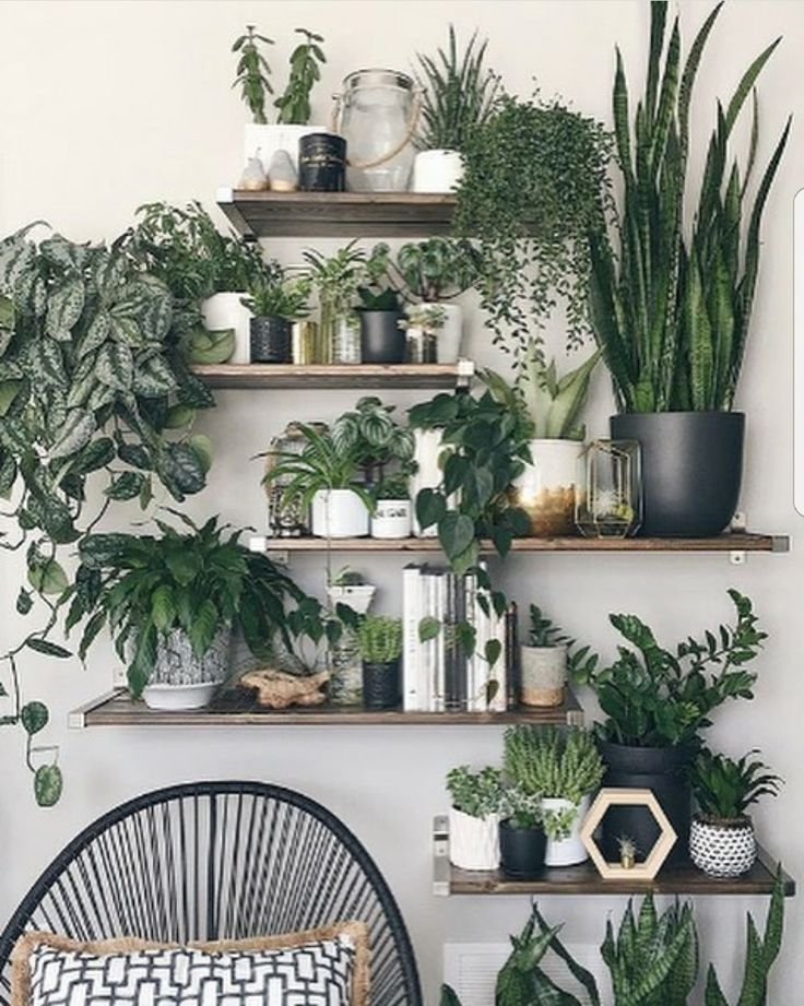 Pure nature look. Prefect becomes the Urban Garden Styl …