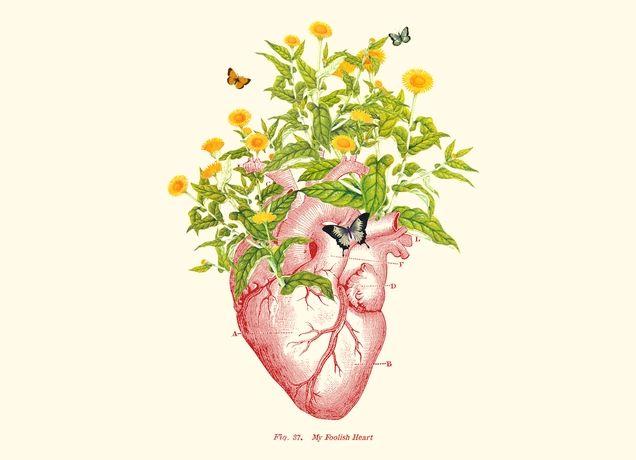 """My Foolish Heart"" - Threadless.com - Best t-shirts in the world"
