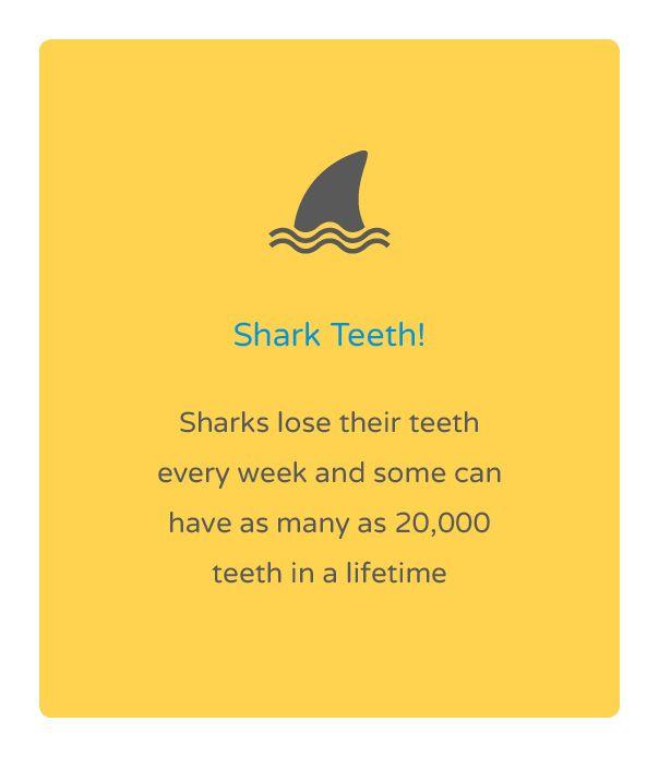 Friday fun fact! Natalie Lenser, DDS | #Modesto | #CA | www.toothfairyteam.com