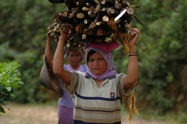 SDGs should tackle energy access to boost gender equality, researcher says | CIFOR Forests News Blog