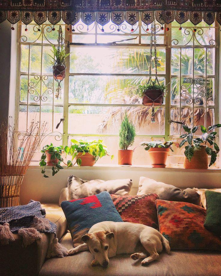 Sunny Mornings  #bohointeriors #gypseydecor #bohoglam #boho #bohemianstyle  #bohostyle #beautifullyboho #ihavethisthingwithcolour #ihavethisthingwithtextiles #gypseyset #makeityours #inmydomain #bohochic #electichome #eclecticdecor #maximalism #myhomevibe #planteriordesign #myhyggehome