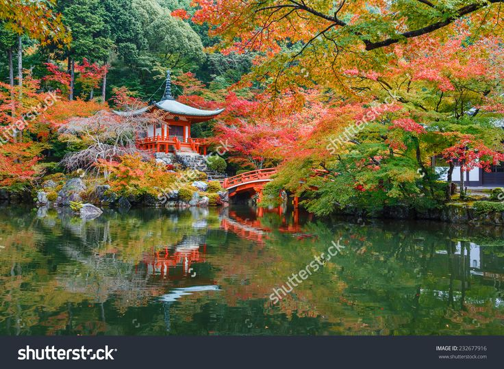 Autumn At Daigoji Temple In Kyoto, Japan Foto d'archivio 232677916 : Shutterstock