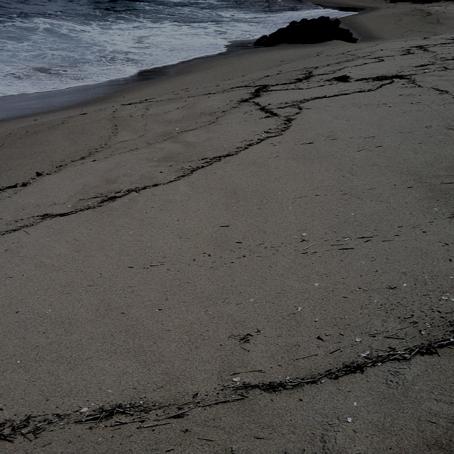 the footprints of waves