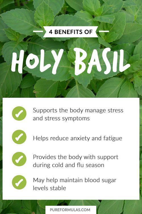 healing properties of tulsi or holy Top benefits of holy basil / tulsi for health, hair and skin  healing power the tulsi plant or holy basil is associated with numerous medicinal qualities .