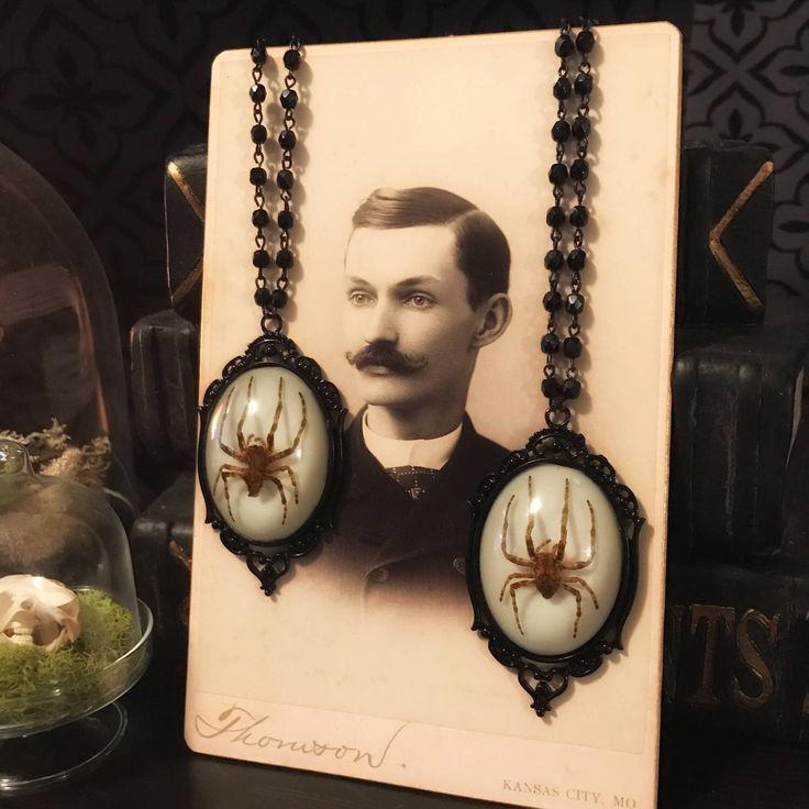 Victorian Spider Rosary, Taxidermy, Insect Jewelry, Real Spider, Spider Necklace, Victorian, Memento Mori, Gothic Jewelry by beyondthedarkveil on Etsy https://www.etsy.com/ca/listing/508301004/victorian-spider-rosary-taxidermy-insect