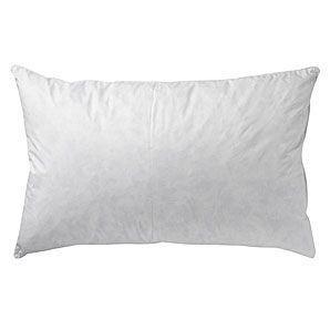 75% White Goose Feather 25% White Goose Down Pillow as Featured at the Wynn Æ Las Vegas ñ Standard Size ñ 20î x 26î