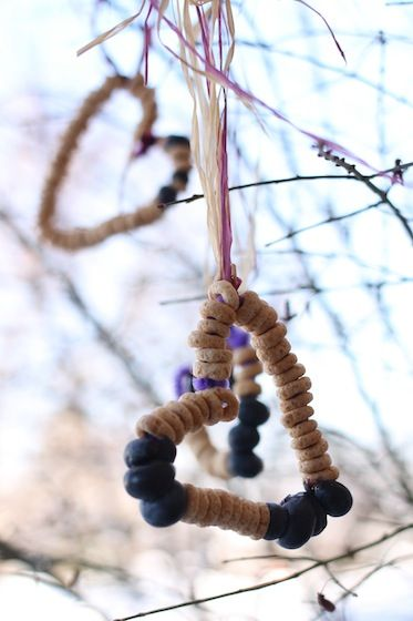 Heart shaped cheerio - blueberry bird feeders with pipe cleaners